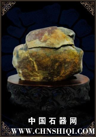 小海螺化石.jpg