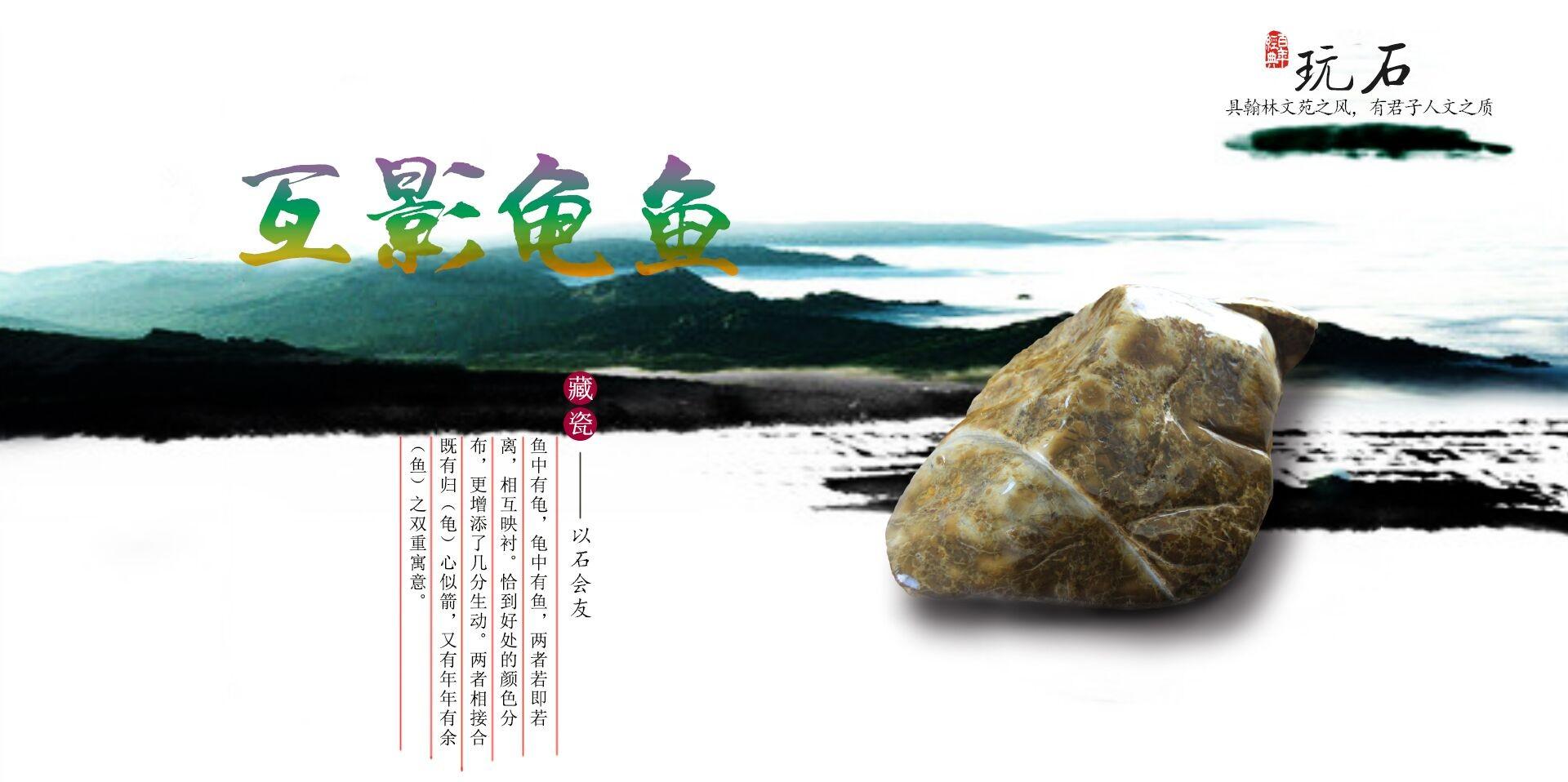 互影龟鱼2.jpg